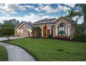 Property for sale at 27740 Water Ash Drive, Wesley Chapel,  FL 33544